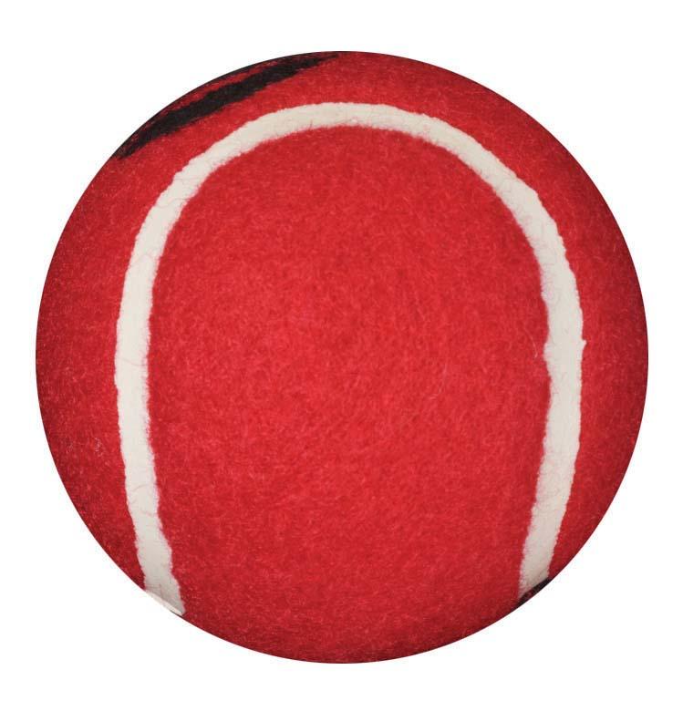 walkerballs-red-1-pair-510-1035-0800-lr.jpg