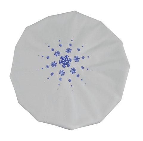 ice-bag-9-24-905-veridian-2.jpg