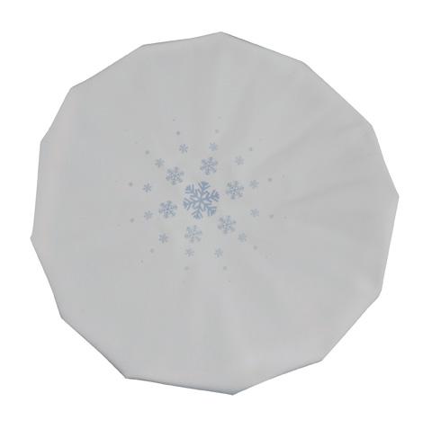 ice-bag-9-24-905-veridian-3.jpg