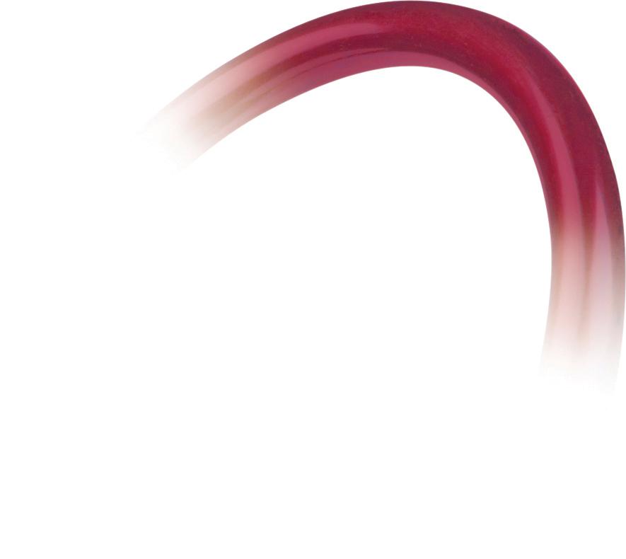 pinnacle-series-stainless-steel-adult-stethoscope-burgundy-05-10504-veridian-4.jpg
